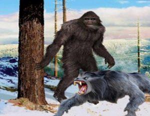 dogman – Truth Seeker Forum